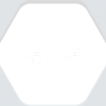 car_types_4_1